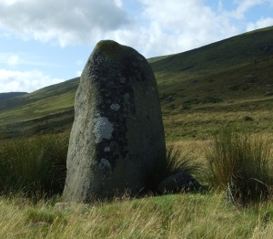 One of the standing stones, 5 Aug 2009